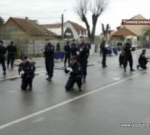 Ziua Porților Deschise la Jandarmeria Satu Mare