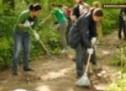 Asociația Stea caută voluntari pentru activităţi de grădinărit