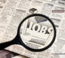 A scăzut rata șomajului la sfârșitul lunii decembrie 2014