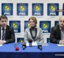 Co-preşedintele PNL, Alina Gorghiu, laudă organizaţia sătmăreană