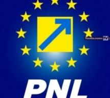 Noul Comitet Local Executiv al PNL Satu Mare
