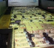 Peste 500 kg de cafea confiscată la P.T.F. Halmeu