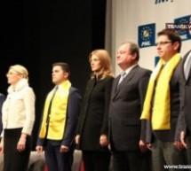 Liberalii şi-au lansat candidaţii parţial şi ţintesc 30% din voturi