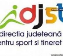 DJST Satu Mare lansează concursul local de proiecte de tineret 2017
