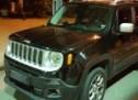 Jeep Renegade, căutat în Germania, descoperit la Petea