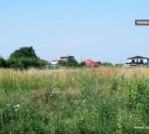 Primăria amendează sătmărenii care nu taie iarba pârloagelor