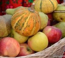Ziua Națională a Produselor Românești în piețe