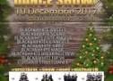 Open Wings Studio vă așteaptă la spectacolul Christmas Dance Show