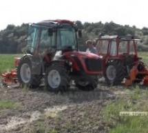 CIUPERCENI: Premieră în plantaţia de Goji (VIDEO-Galerie FOTO)