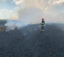 Un lan de grâu a luat foc, între localitățile Tiream și Căuaș