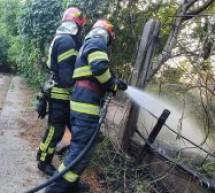 Incendiu de vegetație uscată în județul Satu Mare