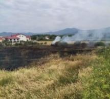 Incendiu de vegetație uscată stins de pompierii sătmăreni