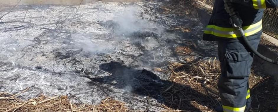 Incendiu de vegetație uscată în Carei