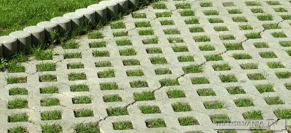 Se amenajează parcarea ecologică de pe B-dul Cloșca