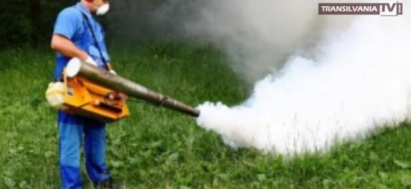 Primăria va efectua lucrări de dezinsecție contra țânțarilor