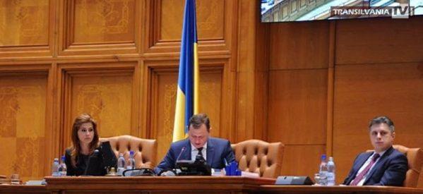 Deputatul sătmărean Ioana Bran susţine internaţionalizarea firmelor româneşti