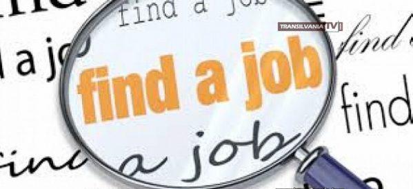 Sute de locuri de muncă în Spațiul Economic European