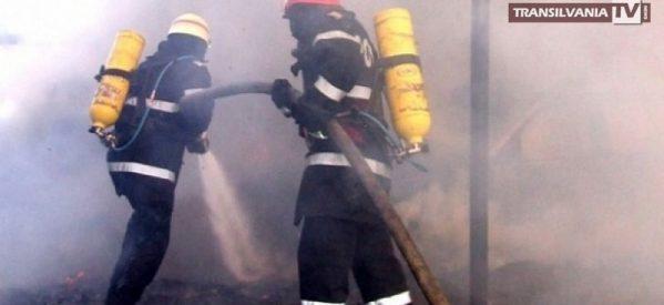 Incendiu la brutăria din Poiana Codrului