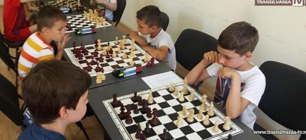 Cursuri de șah în școlile din județ